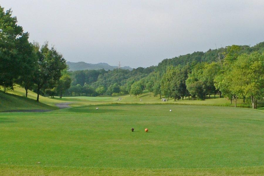 新武蔵丘ゴルフコース INコース17番ホール