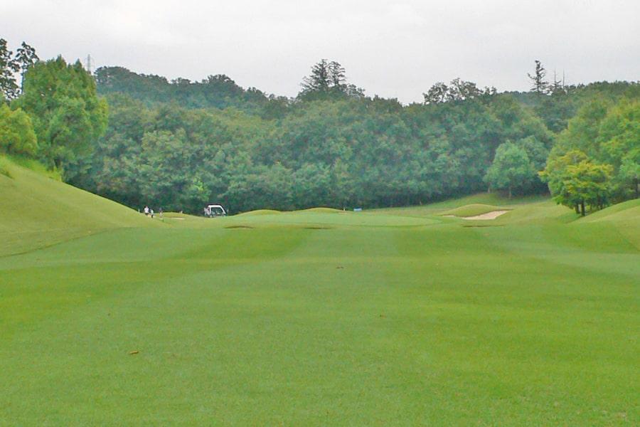 新武蔵丘ゴルフコース OUTコース6番ホール グリーンまではこんな感じです