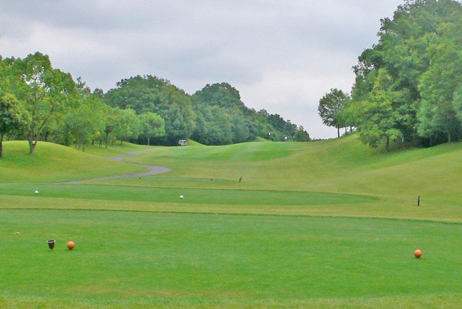 新武蔵丘ゴルフコース OUTコース6番ホール