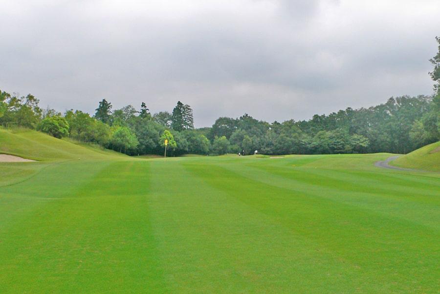 新武蔵丘ゴルフコース OUTコース8番ホール バンカーからグリーンまではこんな感じです
