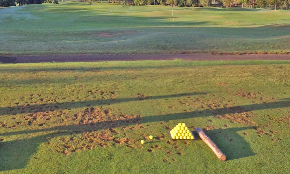 タートルベイ・ゴルフコースの芝から打てるドライビングレンジ
