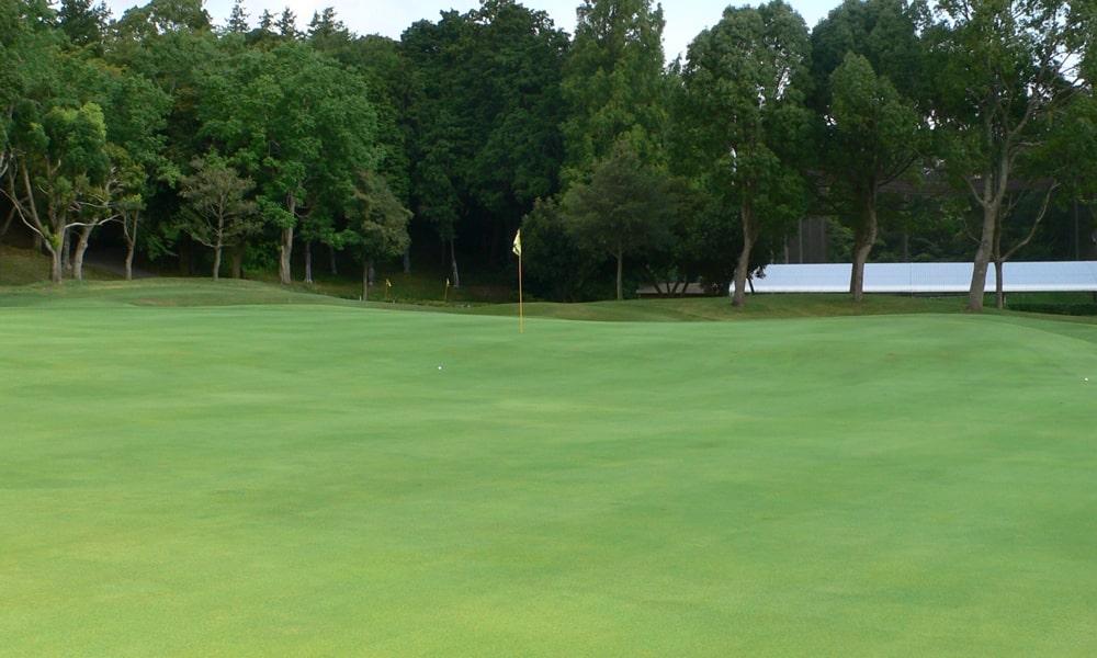 立野クラシック・ゴルフ倶楽部アウトコース3番ホールのアンジュレーションが強いグリーン