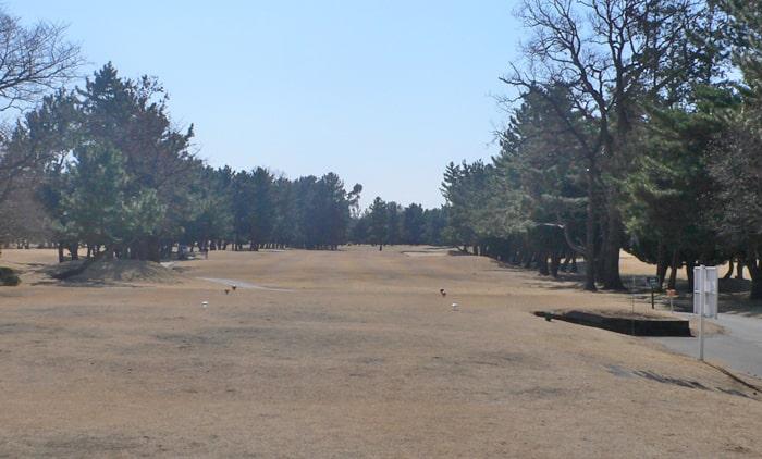 浦和ゴルフ倶楽部INコース10番ホール