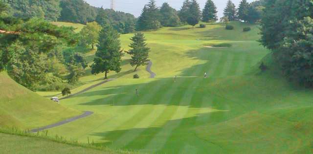 東京国際ゴルフ倶楽部INコース11番ホールのコスレイアウト