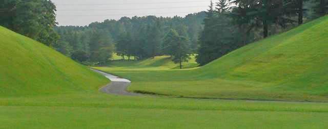 東京国際ゴルフ倶楽部INコース12番ホールのコースレイアウト