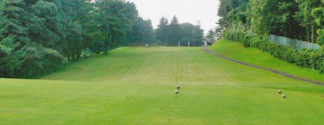 東京国際ゴルフ倶楽部INコース16番ホールのコースレイアウト