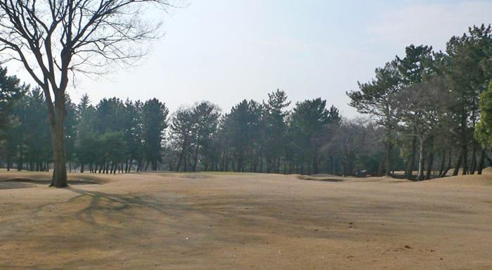 浦和ゴルフ倶楽部OUTコース1番ホールのグリーン周り