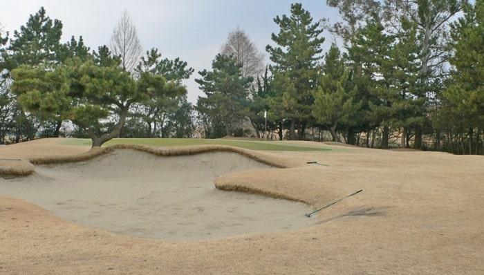 浦和ゴルフ倶楽部OUTコース3番ホールのグリーン周り