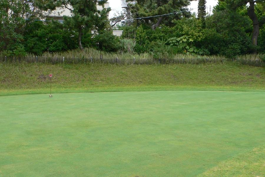 茅ヶ崎ゴルフ倶楽部の練習グリーン