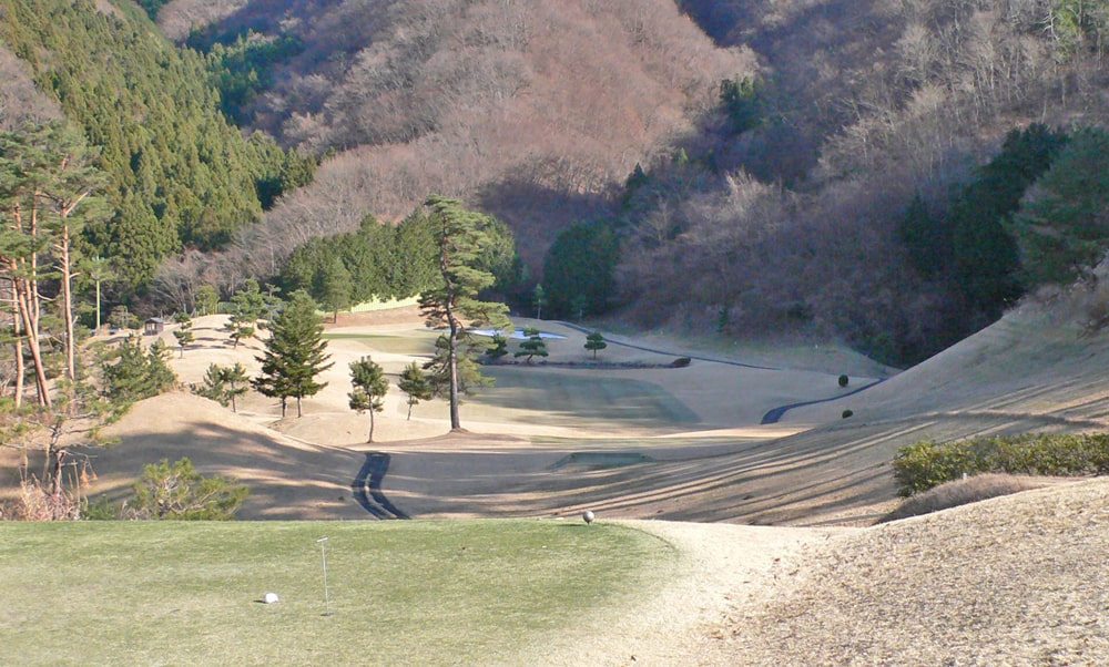 桜ヒルズゴルフクラブ(旧秋山カントリークラブ)アウトコース6番ホール