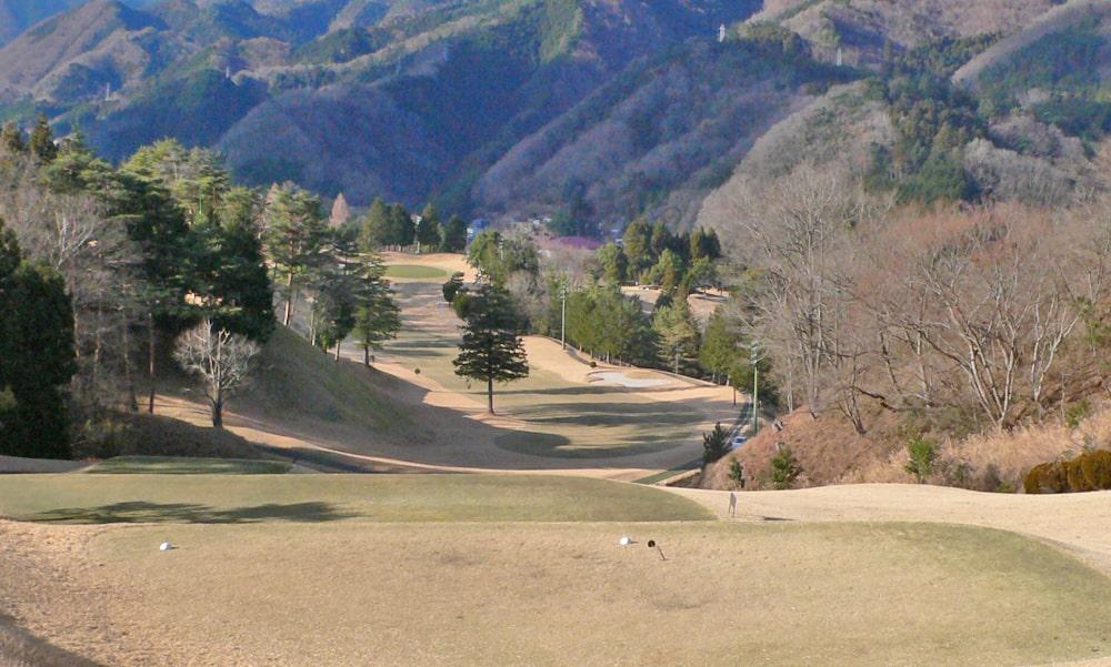 桜ヒルズゴルフクラブ(旧秋山カントリークラブ)アウトコース7番ホール