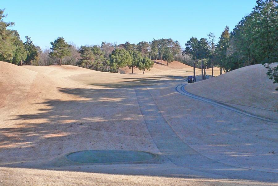 武蔵丘ゴルフコース INコース11番ホール