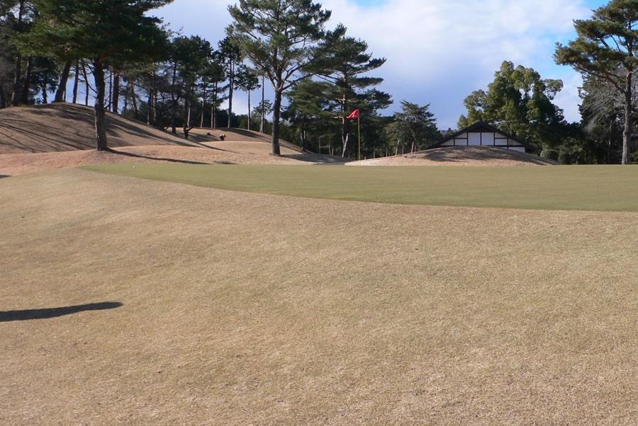 武蔵丘ゴルフコース INコース14番ホールのグリーン