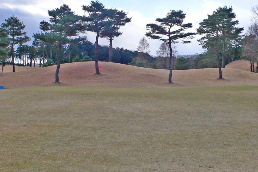 武蔵丘ゴルフコース INコース17番ホールのグリーン周り