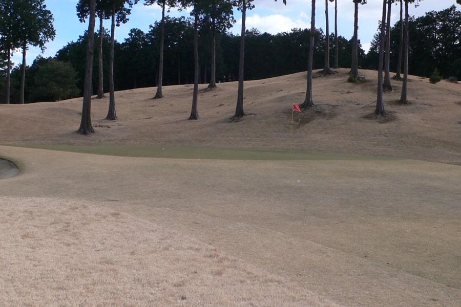 武蔵丘ゴルフコース INコース18番ホールのグリーン周り