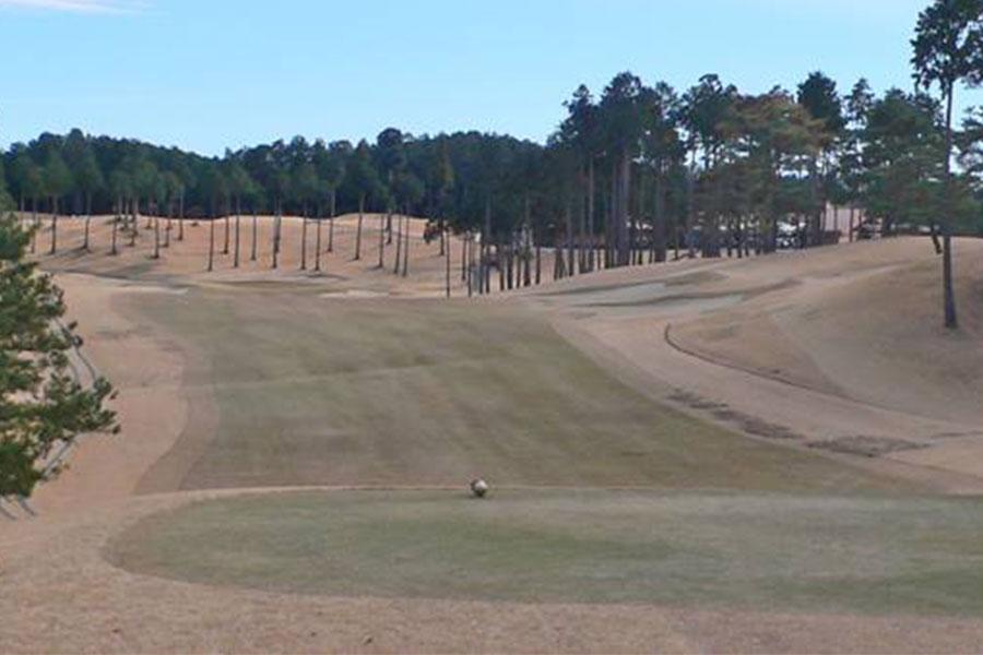 武蔵丘ゴルフコース INコース18番ホール