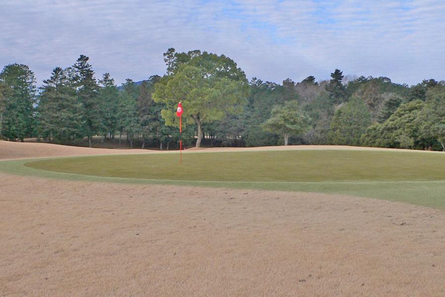 越生ゴルフクラブ OUTコース1番ホールのグリーン