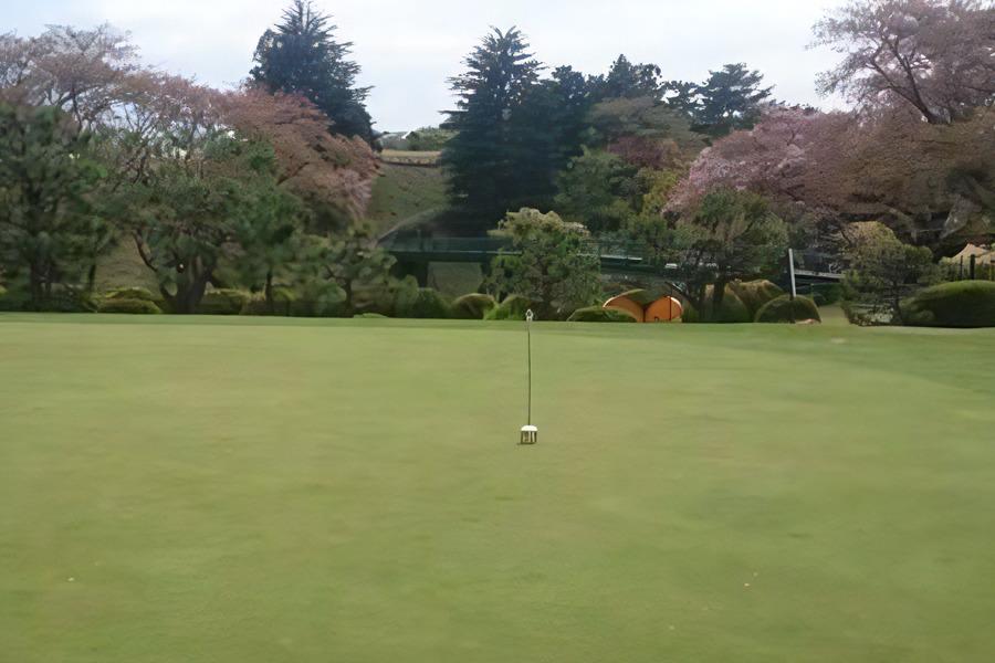 東京国際ゴルフ俱楽部のパッティンググリーン